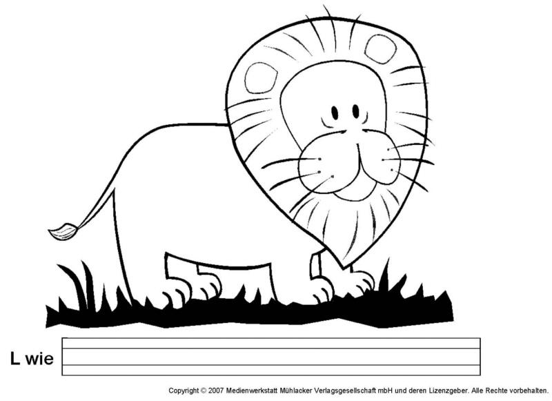 Hier findest du eine wissenskarte über den löwen