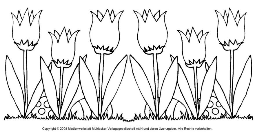 Ausmalbild Tulpe 1 Medienwerkstatt Wissen 2006 2017