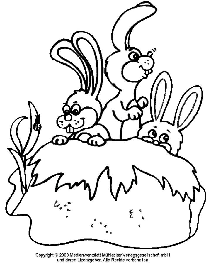 Malvorlagen Hasenfamilie | My blog