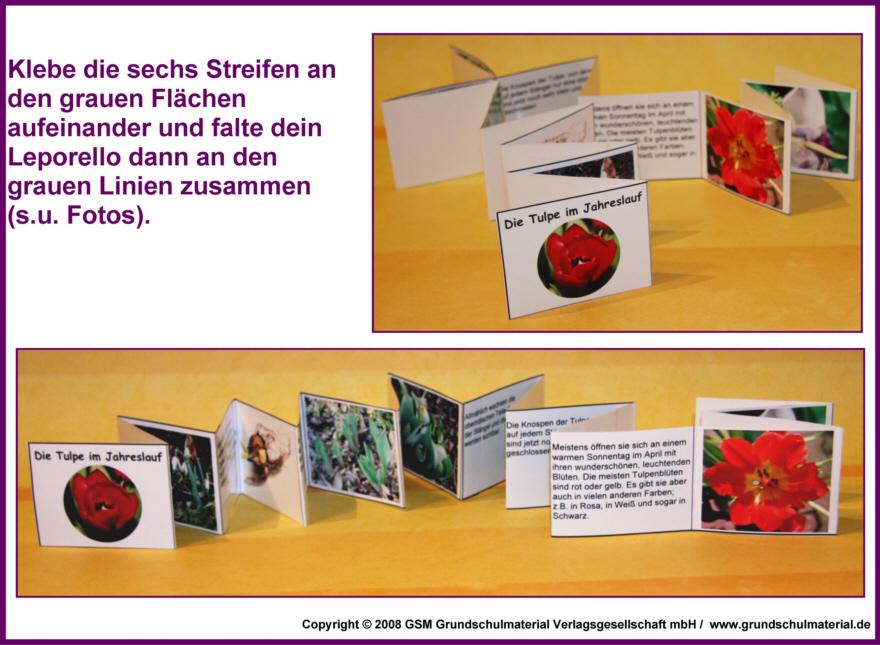 heidederby  Tagebuch