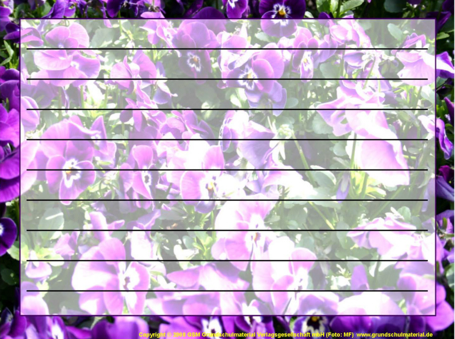 Wallpaper bild sonne sand sommer große sommer ansichten 499