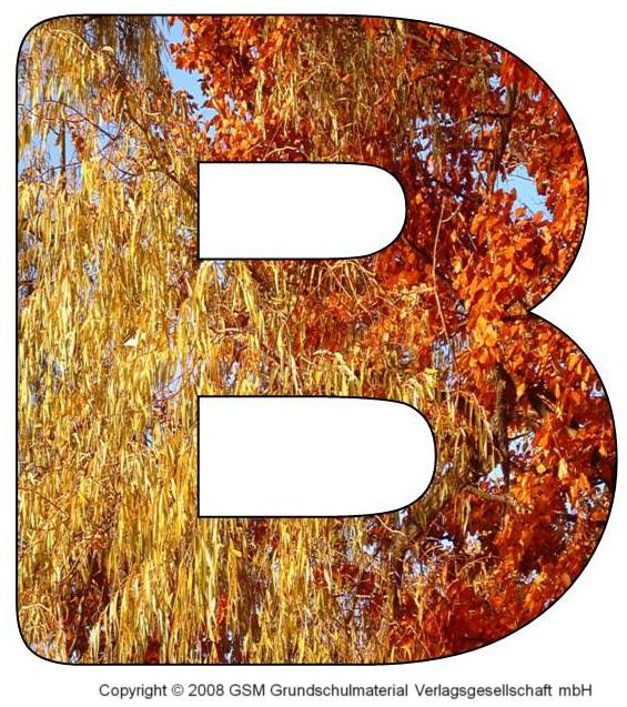 HerbstDEKOBuchstaben A und B  MedienwerkstattWissen