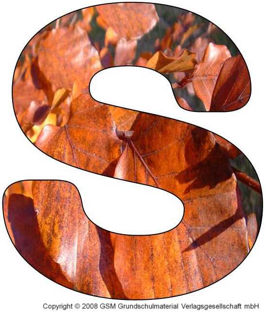 HerbstDEKOBuchstaben S und T  MedienwerkstattWissen