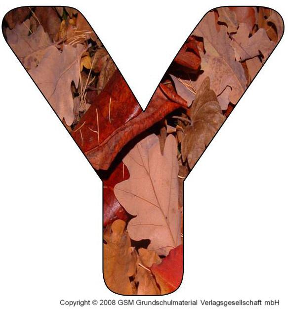 HerbstDEKOBuchstaben Y und Z  MedienwerkstattWissen