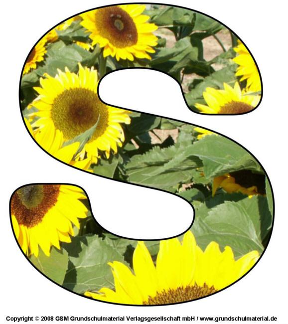 DEKO-BUCHSTABE Blumen S - Medienwerkstatt-Wissen u00a9 2006 ...