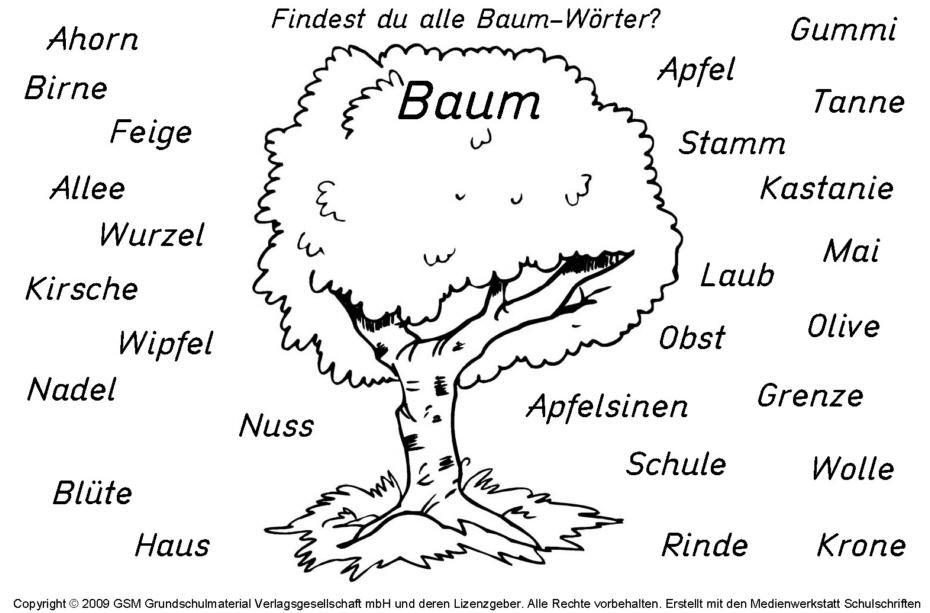 baumw246rter medienwerkstattwissen 169 20062017