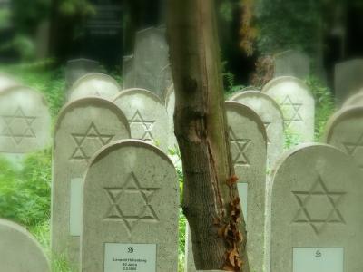 judenverfolgung im dritten reich