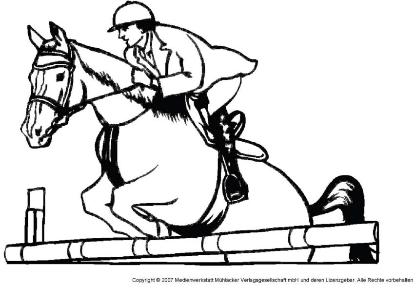 Pferd 7 medienwerkstatt wissen 2006 2017 medienwerkstatt abb thecheapjerseys Images