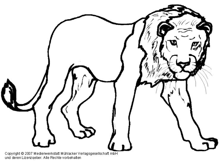 36 löwe zum ausmalen  besten bilder von ausmalbilder