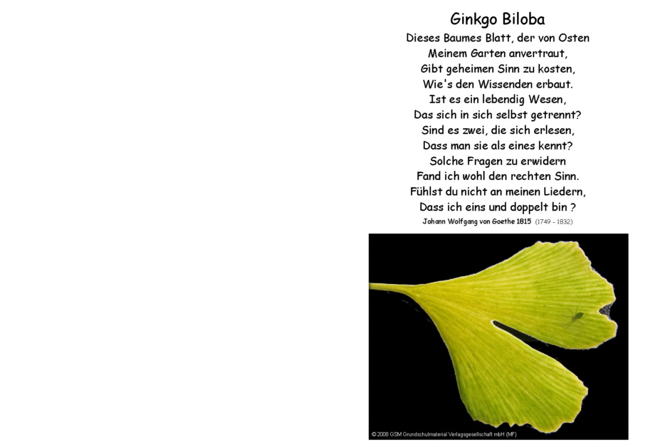 Goethe gedichte baum