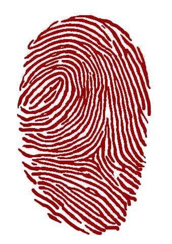 Der Fingerabdruck Des Menschen Medienwerkstatt Wissen C 2006 2017