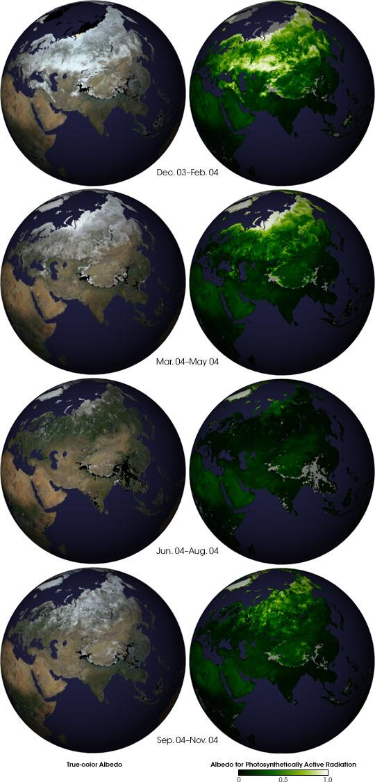 earths surface alb seasonal - 540×1124