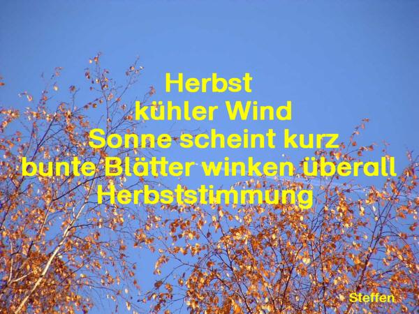 Herbst Elfchen Von Schulern 2 Medienwerkstatt Wissen C 2006 2017