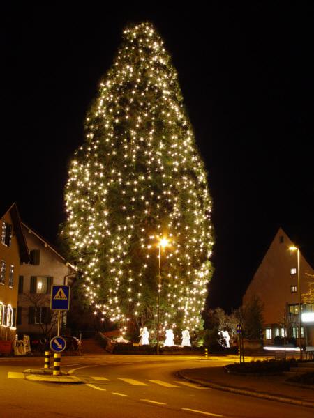 Der Weihnachtsbaum.Der Weihnachtsbaum Heinrich Seidel Medienwerkstatt Wissen 2006