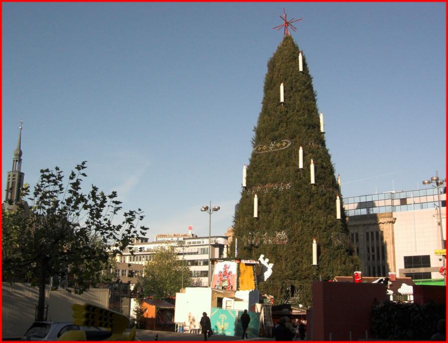 Größter Tannenbaum Deutschlands.Der Größte Zusammengesetzte Weihnachtsbaum Der Welt